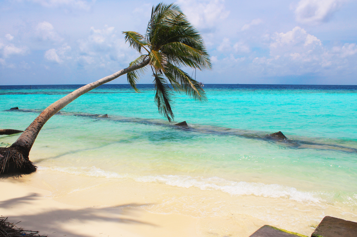بالصور صور جزر المالديف , صور ولا اروع من جزر المالديف 1771 12