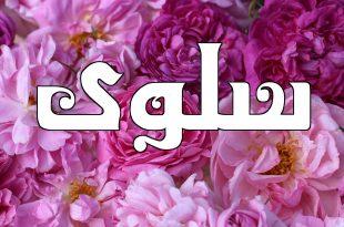 بالصور معنى اسم سلوى , تعرف على معنى اسم سلوى 1794 9 310x205
