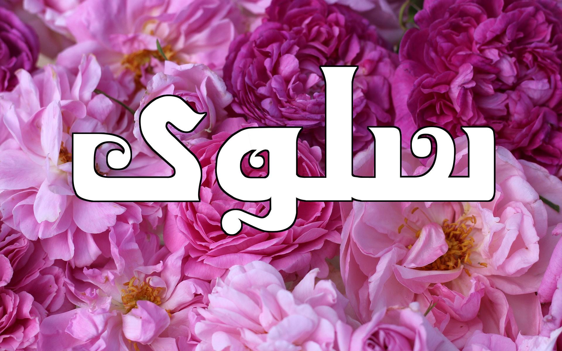 صور معنى اسم سلوى , تعرف على معنى اسم سلوى