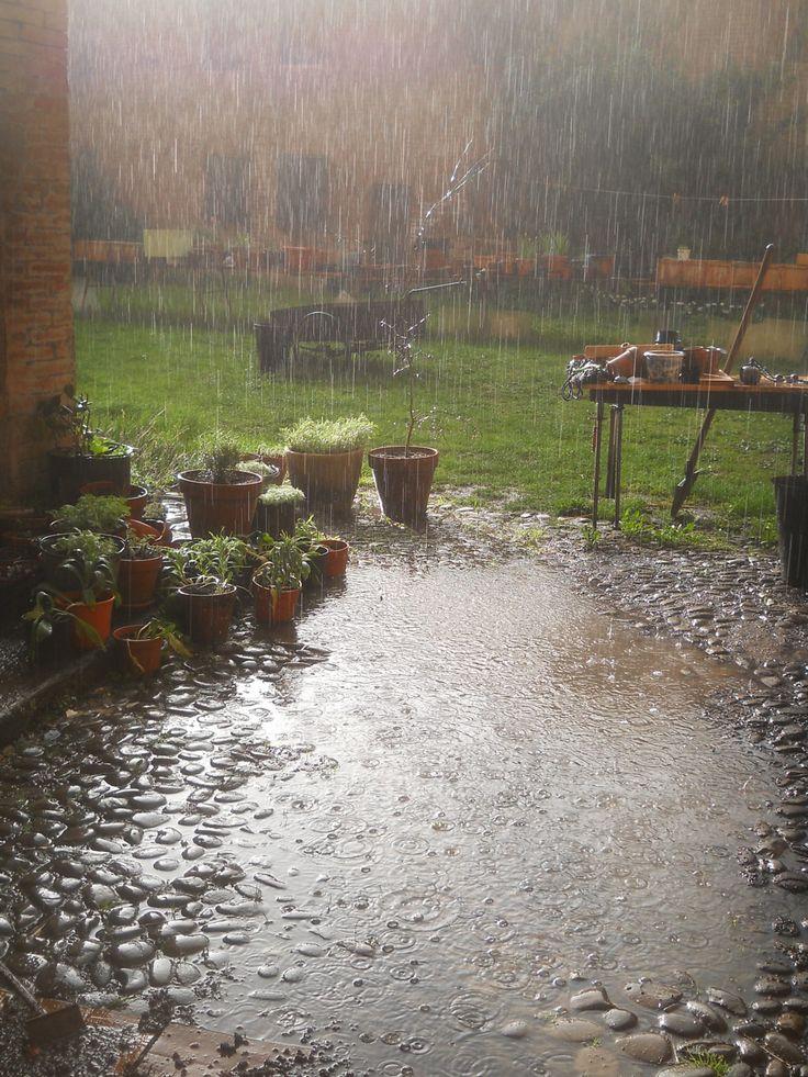 بالصور خلفيات مطر , مناظر مطر خلفيات روعة 1812 3