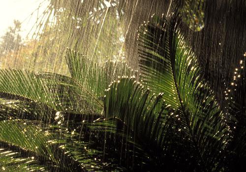 بالصور خلفيات مطر , مناظر مطر خلفيات روعة 1812 6