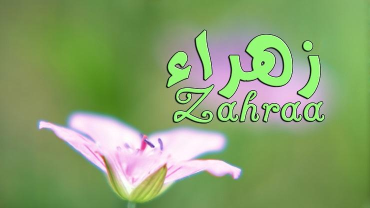 بالصور صور اسم زهراء , اروع صور لاحلى اسم زهراء 1814 4