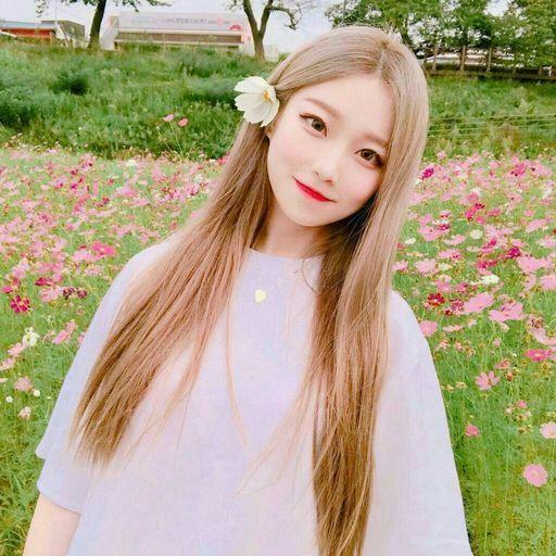 بالصور اجمل بنات كوريات في العالم , كوريا وبناتها الجميله 431 3