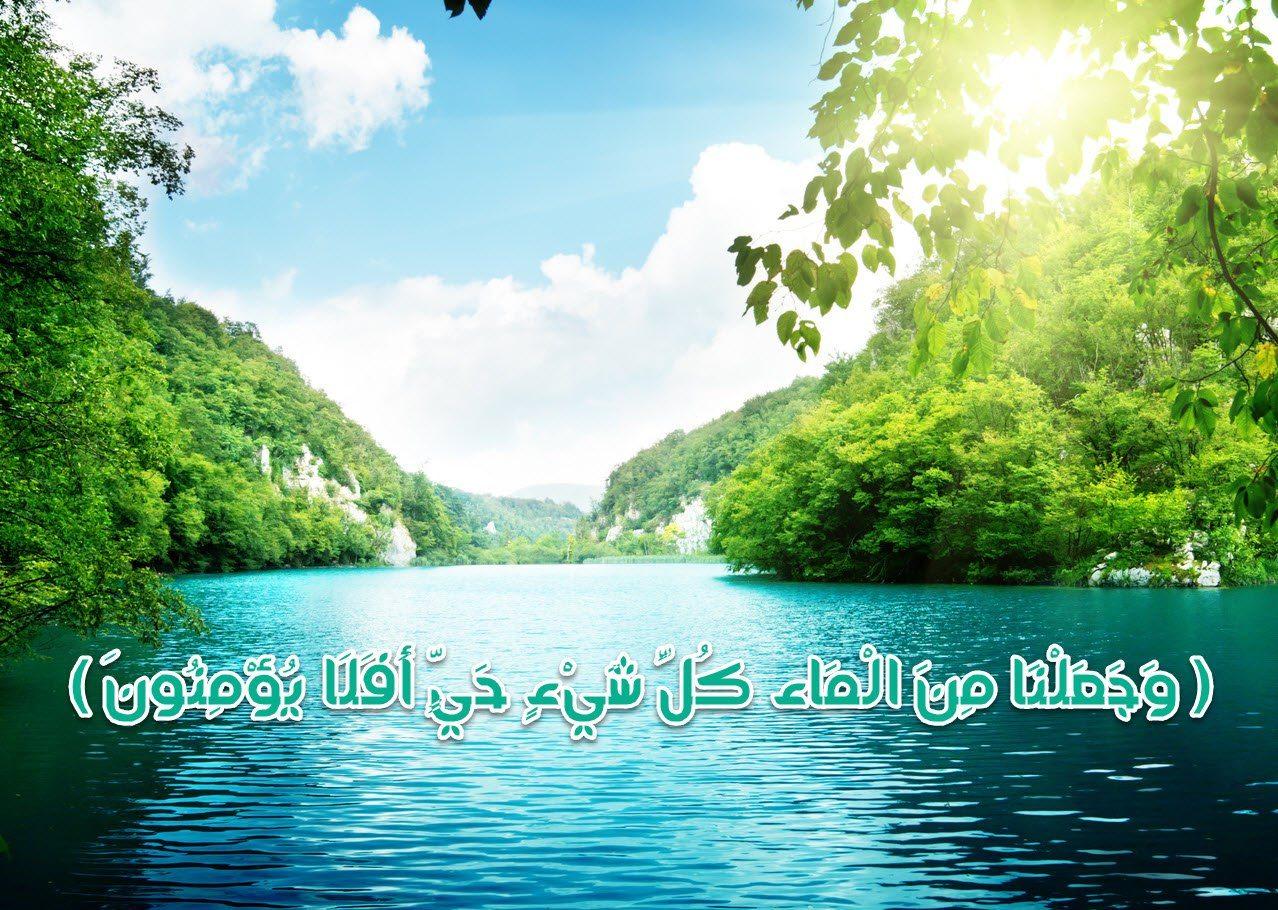 بالصور هل تعلم عن الماء , معلومات عن الماء 460 3