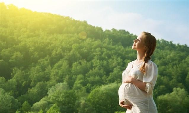 صور حلمت اني حامل وانا متزوجه وعندي اطفال , تفسير حلم المراه الحامل للمتزوجة وغير المتزوجة