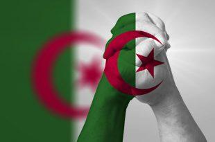 بالصور رموز السيادة الوطنية , ما يميز كل وطن 4750 3 310x205