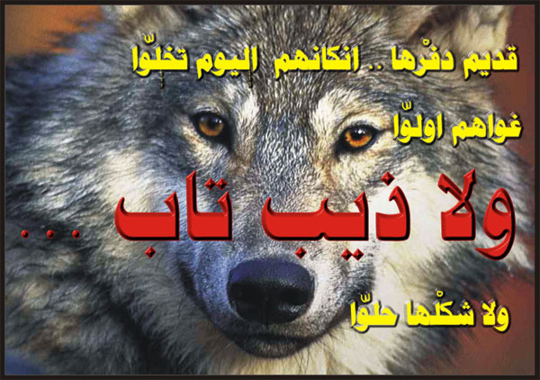 صور شعر شعبي ليبي , اشعار تحكي اوجاع ليبيا