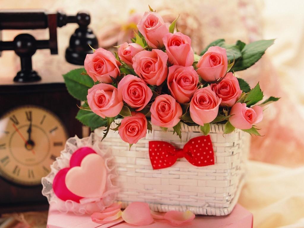 بالصور صور ورد طبيعي , اجمل اشكال الزهور بالصور 4891