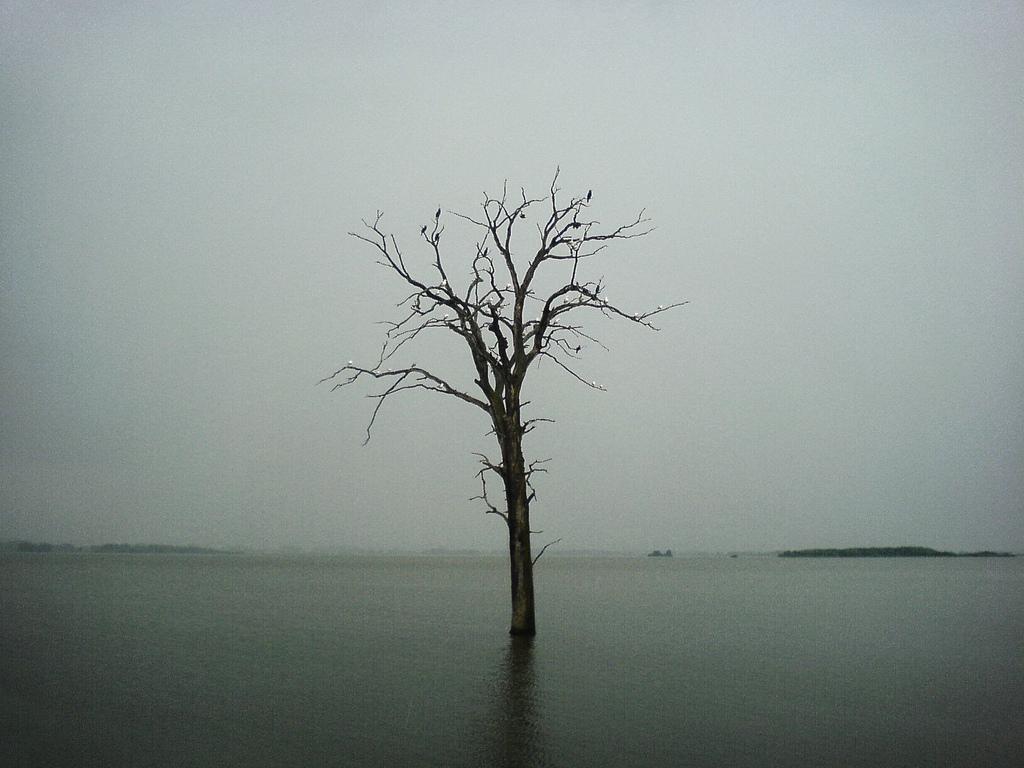 بالصور صور معبرة عن الحزن , اكثر الكلمات الحزينه مع الصور 4929 6
