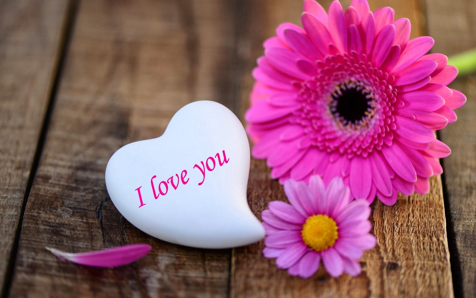 بالصور صور جميله رومانسيه , روعه العشق والغرام والرومانسيه بالصور 4966 3