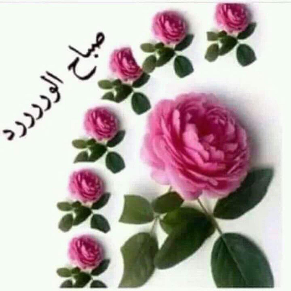 بالصور صباح الخير رومانسية , اقيم واشيك صور صباح الخير لاحبابنا 4994 3