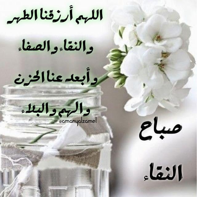 بالصور خلفيات صباحيه , صباح الروقان والفرفشة 503 10