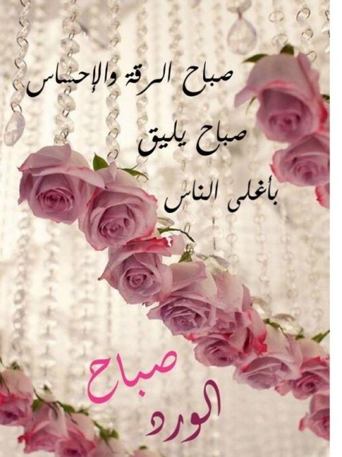 بالصور خلفيات صباحيه , صباح الروقان والفرفشة 503 11