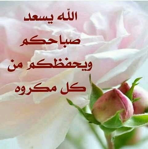 بالصور خلفيات صباحيه , صباح الروقان والفرفشة 503 2