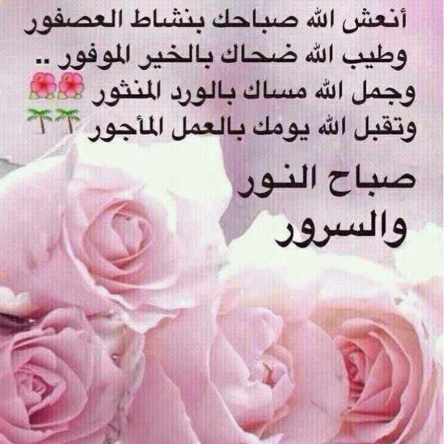 بالصور خلفيات صباحيه , صباح الروقان والفرفشة 503 9
