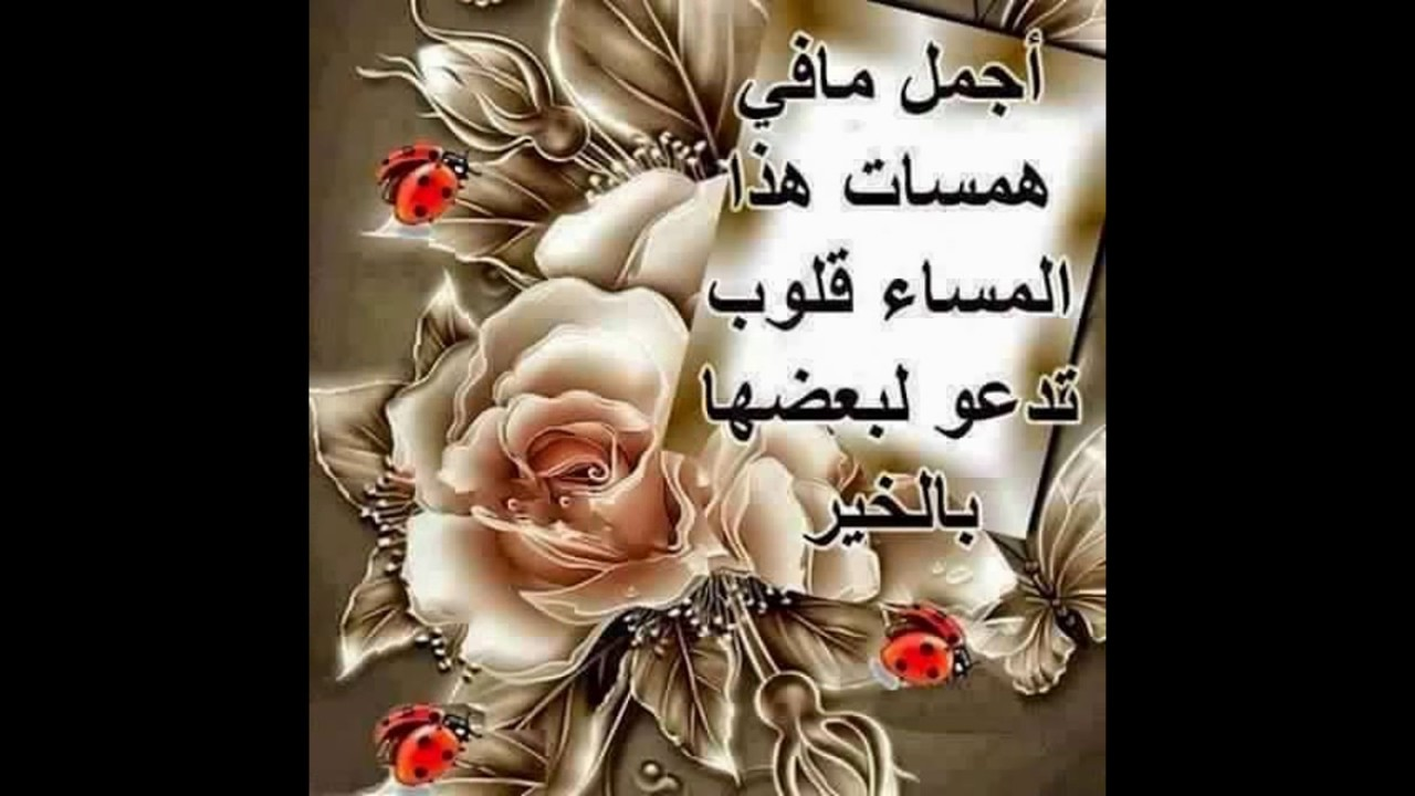 صوره صور صباح ومساء الخير , اجمل الصور المعبره عن الصباح والمساء