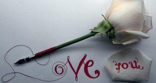 صوره صور حب و غرام , صور رومانسيه عن الحب والعشق