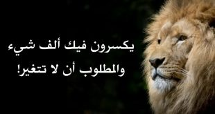 بالصور حكم اليوم , مقوله حكيم جامده 5119 10 310x165