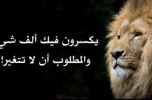صوره حكم اليوم , مقوله حكيم جامده