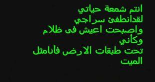 صوره ابيات شعر قصيره حكم , شعر مثير يحتوى فى معانيه على حكم