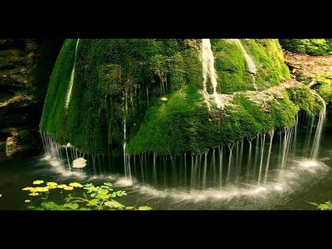 بالصور مناظر طبيعية متحركة , اجمل المناظر التي تعجبك 580 10
