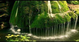 بالصور مناظر طبيعية متحركة , اجمل المناظر التي تعجبك 580 9 310x165