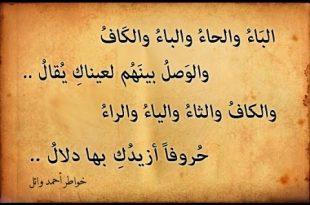صوره اشعار غزل قصيره , اشعار معبرة للغزل