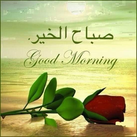 بالصور صور صباح الخير , لقطات يسعد صباحك 606 11