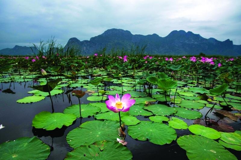 بالصور جمال الطبيعة , ولنا في الطبيعة وقفات 617 4
