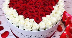 بالصور صور ورد قلوب , رمزيات قلوب رومانسية 11680 11 310x165