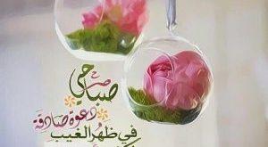 صور صباح الورد حبيبي , صباح الخير حبيبي