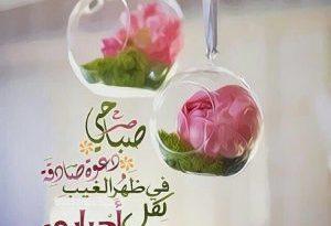 بالصور صباح الورد حبيبي , صباح الخير حبيبي 1156 2 300x205