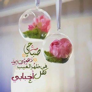 صباح الورد حبيبي , صباح الخير حبيبي