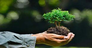 صور موضوع عن البيئة , ماهي خصائص البيئة