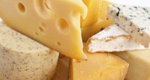 صور افضل انواع الجبن , فوائد تناول الجبن