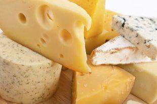 صورة افضل انواع الجبن , فوائد تناول الجبن