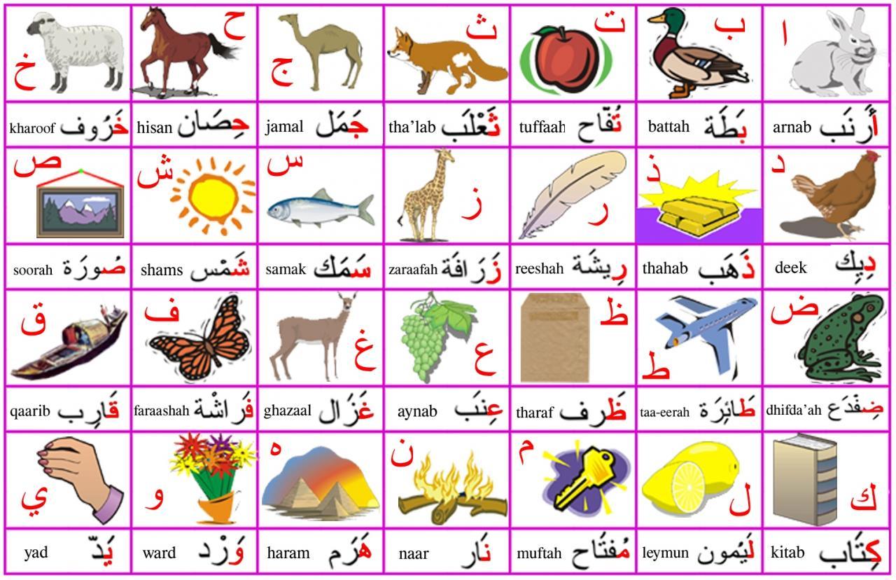 صورة الحروف العربية بالصور , صور الحروف للاطفال 11862 1