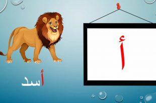 صورة الحروف العربية بالصور , صور الحروف للاطفال