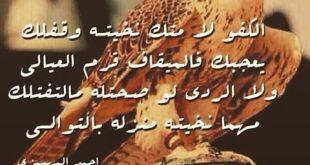 بالصور قصيدة مدح في رجل كريم , اشعار مدح جميلة 11869 8 310x165