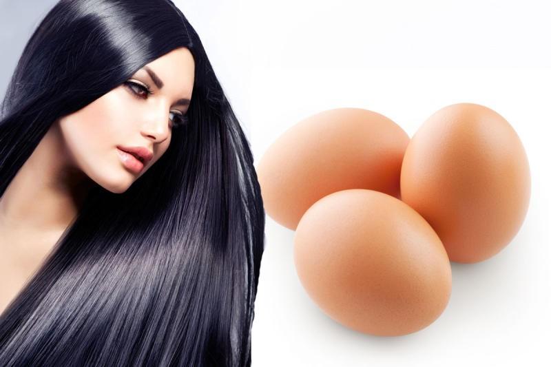 صور وصفة البيض للشعر , ماسك مغذي للشعر