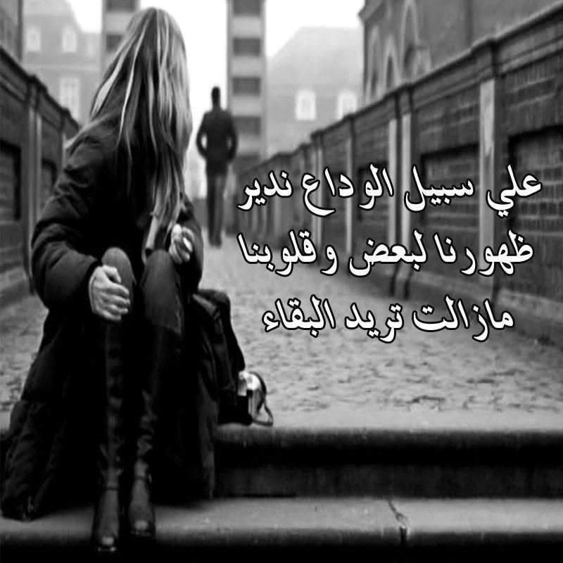 بالصور الوداع يا حبيبي , كلمات مؤثرة عن الوداع 11933 10