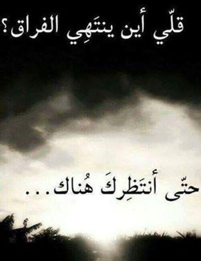 بالصور الوداع يا حبيبي , كلمات مؤثرة عن الوداع 11933 8