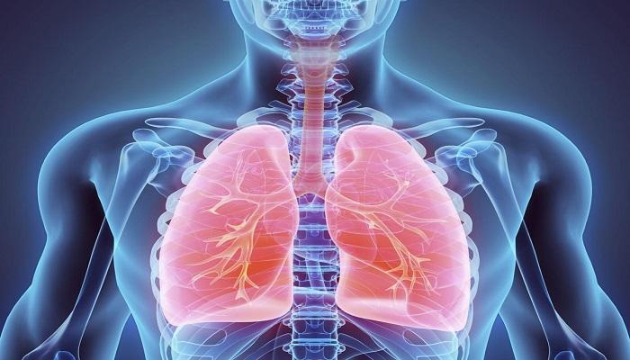صور الوقاية من امراض الجهاز التنفسي , مشاكل التنفس للجنسين