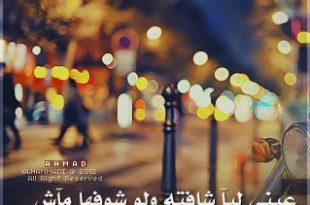 صورة شعر سعودي بدوي , اشعار باللهجة السعودية