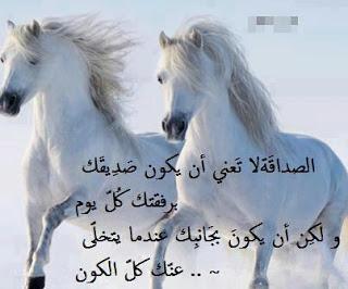 صورة ابيات شعر عن الصاحب , كلام في حب الصحاب 11706 5