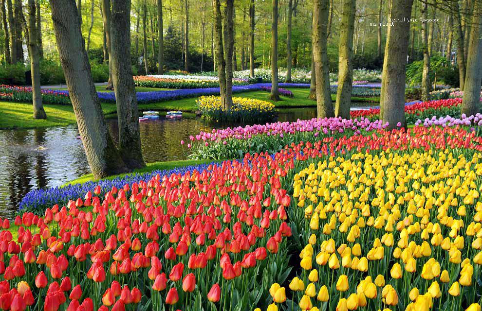 صور صور عن فصل الربيع , صور مشمسة لاحلي طقس