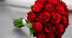 صورة بوكيه ورد احمر , تاثير جمال الورود على النفس