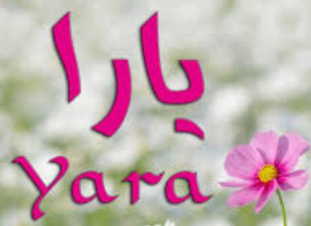 صورة معنى اسم يارا , يا له من اسم رقيق