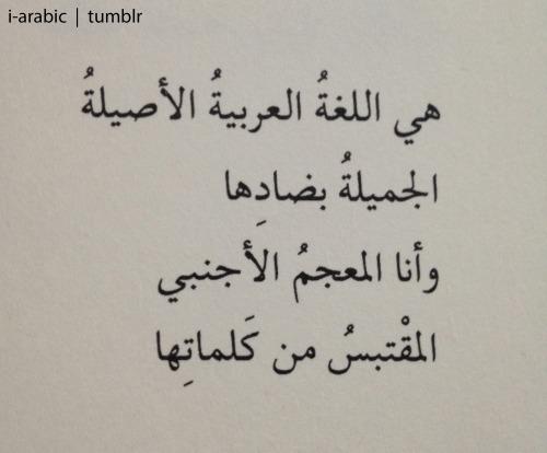 صورة صور عن اللغة العربية , اجمل لغات العالم لغة الضاد 5007 5