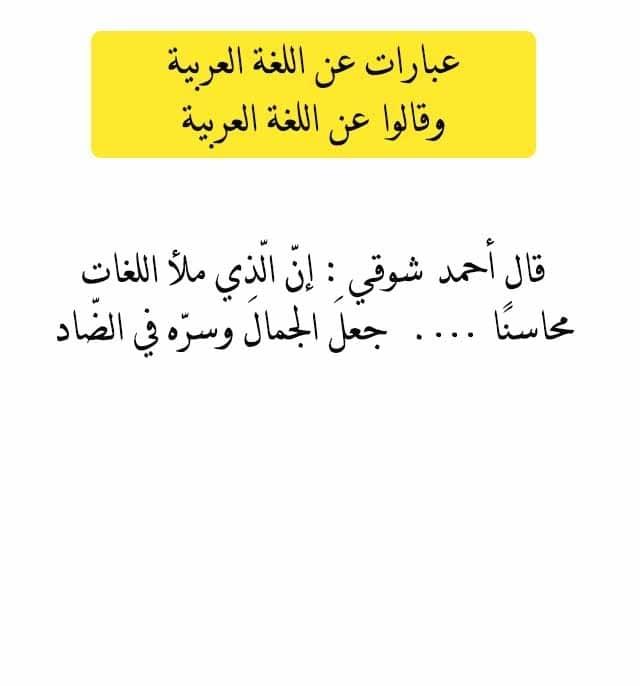 صورة صور عن اللغة العربية , اجمل لغات العالم لغة الضاد 5007 6